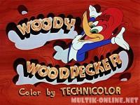 Приключения Вуди и его друзей / The Woody Woodpecker Show