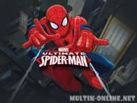 Совершенный Человек-Паук / Ultimate Spider-Man