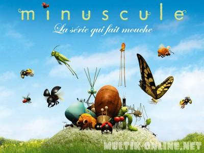 Букашки / Minuscule